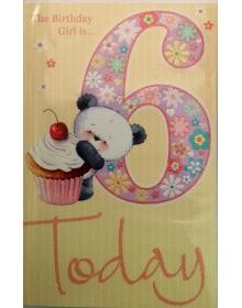 Age 6 Birthday
